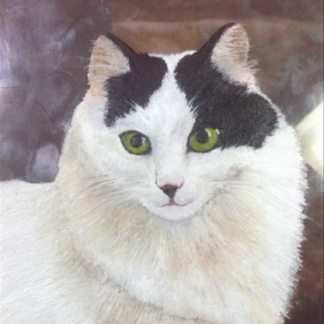 Encaustic Pet Portraits
